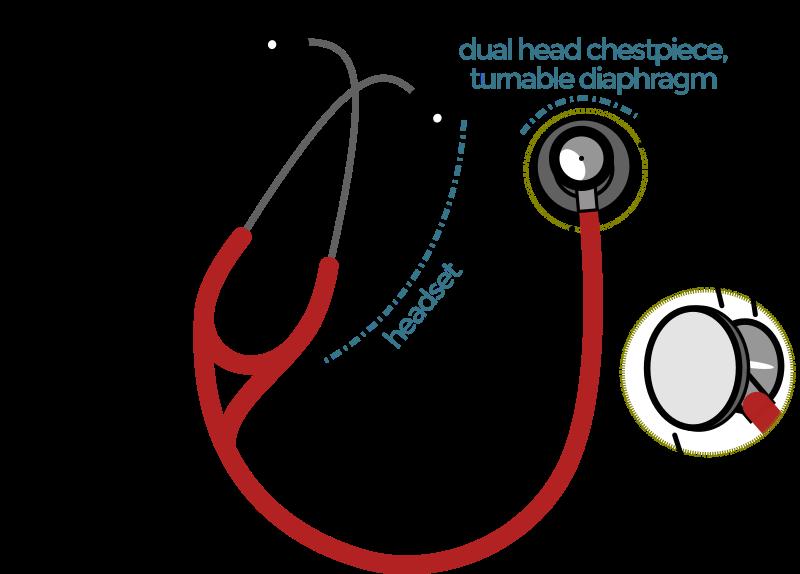 Anatomy of the Stethoscope